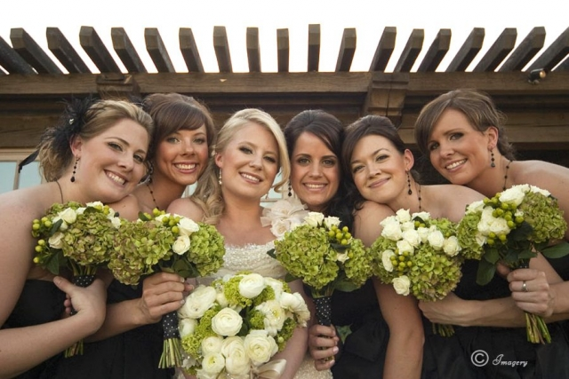 Professional Wedding Picture of Bridesmaids and Bride