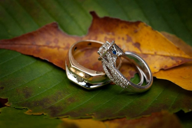 Professional Picture of Bride and Groom Rings